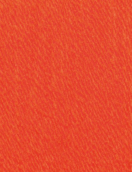 SMC Northern 100 g Farbe 212 orange
